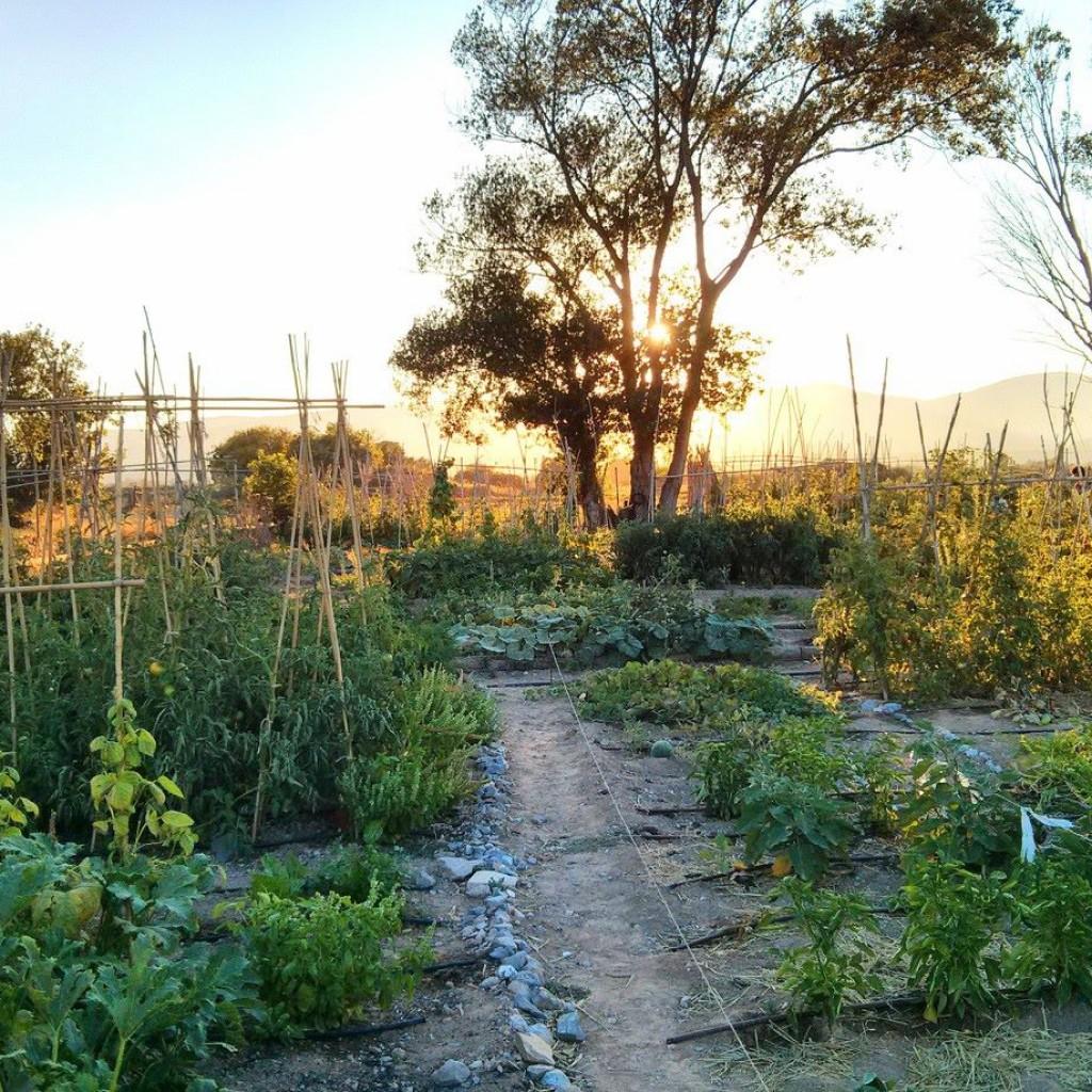 La Huerta de Paka